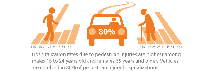 Hospitalization rates due to pedestrian injuries are highest among males 15 to 24 years old and females 65 years and older.